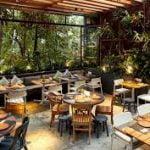 sanitización y desinfección a restaurantes